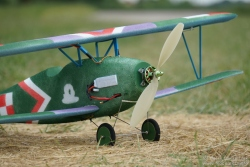 Model ESA WW1: Albatros D.III przed oblo...